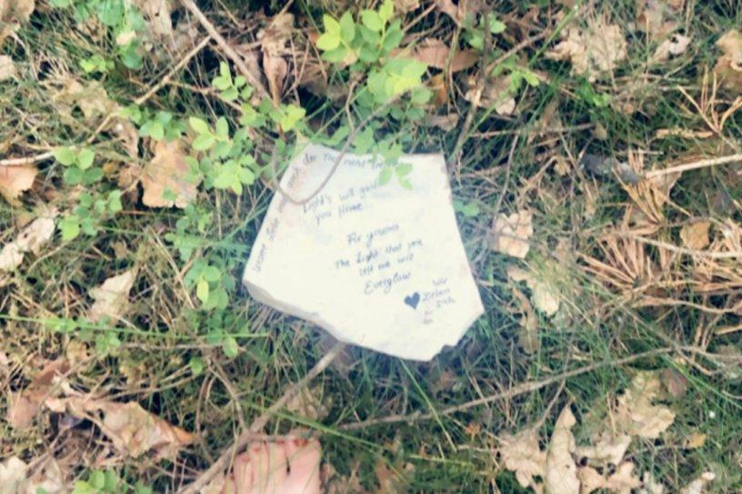 Über die Dichtkunst - Poesie im Gras